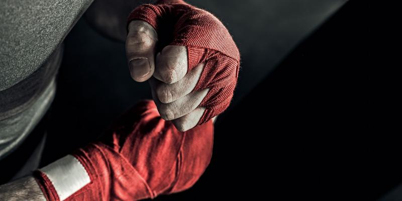 Martial arts fists